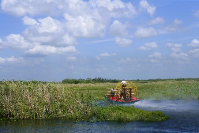 EvergladesFlorida-ST