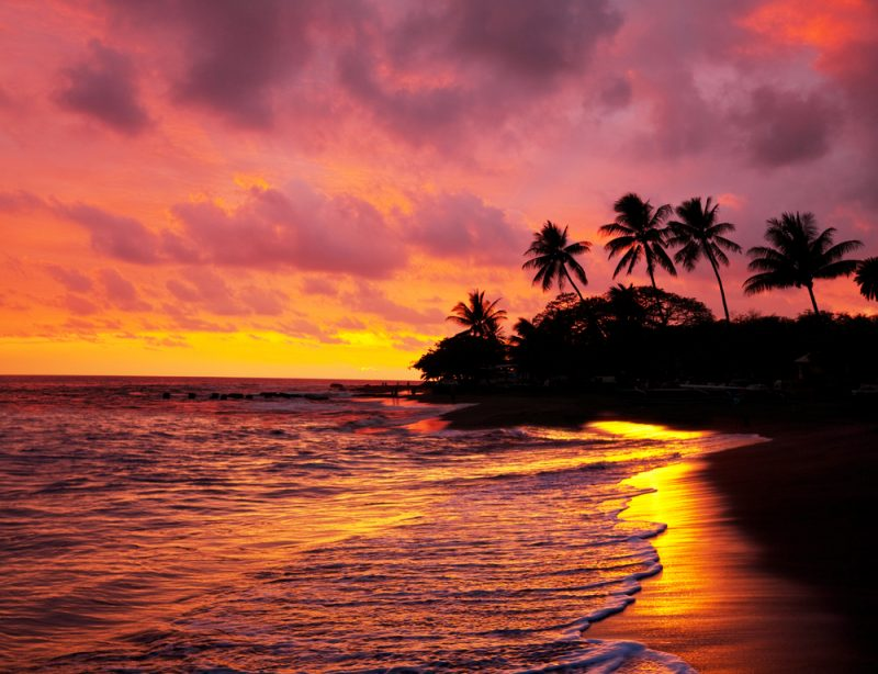 Until 2022! Cheap full-service flights from Frankfurt to Hawaii from only €430!